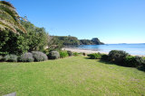 Waiheke The Black Bach: Front lawn
