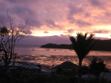 Waiheke Kiwi View Cottage: Sunset from KIWI St