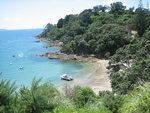 Waiheke Sandy Chalet: The bay